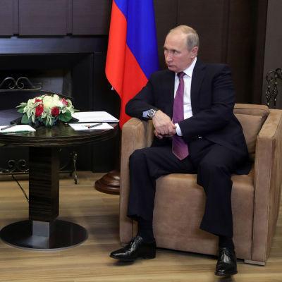 Rysslands president Vladimir Putin och Syriens president Al-Assad diskuterar Syrienkonflikten i Putins residens i Sotji.