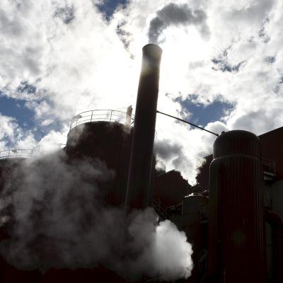 Metsäteollisuusyhtiö UPM aikoo sulkea Kaipolan paperitehtaan.