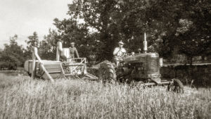 ett gammalt svartvitt fotografi. Två män, en på traktor, andra på en gammeltida skördetröska på ett sädesfält. Sensommar..