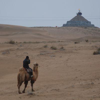 En man som sitter på en kamel