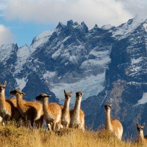 BBC:n kolmiosainen luontodokumenttisarja tutustuu Andien armottomaan erämaahan.