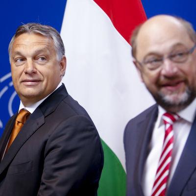 Ungerns premiärminister Viktor Orban (t.v.) och Europaparlamentets talman Martin Schulz (R) i Bryssel den 3 september 2015.