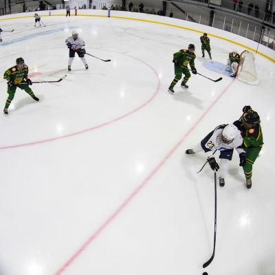 Ilves hockeydamer möter Kiekko-Espoo.