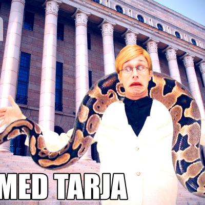 Djur med Tarja: Burmesisk pyton