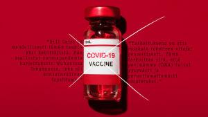 MOT: Meitä ette rokota