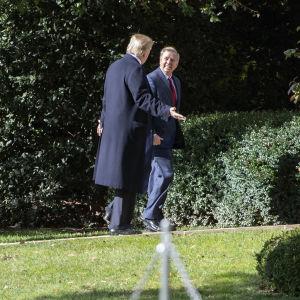 Den republikanska senatorn Lindsey Graham säger sig vara hoppfull efter att ha träffat president Donald Trump i Vita huset. Denna bild är från ett möte i november