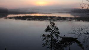 Usvainen järvi keväisenä toukokuun yönä.