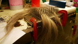 Häklällä selvitetään peruukkiin solmittavat hiukset.