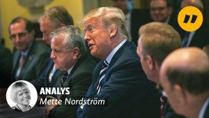 Donald Trump bland medlemmarna av sitt cabinett med händerna i kors och ett leende på läpparna.