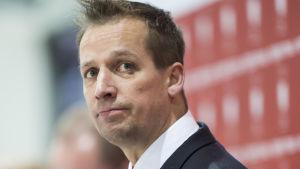 Antti Törmänen, HIFK, november 2014.