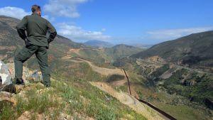 En amerikansk gränsvakt blickar ut över gränsen mot Mexico