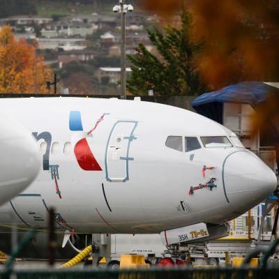 American Airlines-plan av typen Boeing 737 MAX på flygfältet i Renton i Washington.