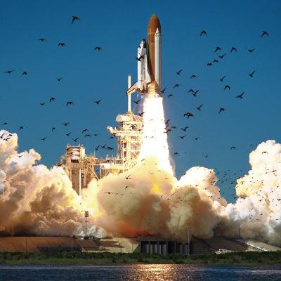 Rymdfärjan Challenger startar från Cape Canaveral den 28 januari 1986. Strax efter starten exploderar den.