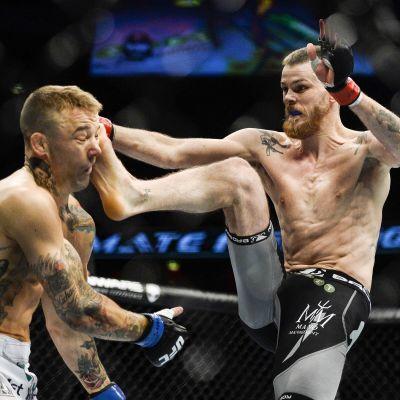 Niklas Bäckström träffar rätt mot Mike Wilkinson vid UFC-gala i Stockholm 2014.