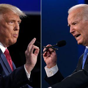 Kampen mellan Donald Trump och Joe Biden når nu sin kulmen.