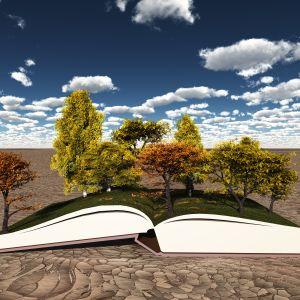 Bok och träd