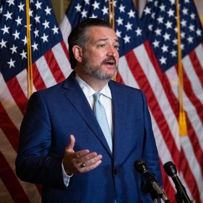 Bild på senatorn Ted Cruz framgör en rad amerikanska flaggor.