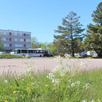 vårblommor i förgrunden, bakom Hangö centrum