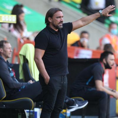 Norwichs tränare Daniel Farke coachar sitt lag i matchen mot Everton.