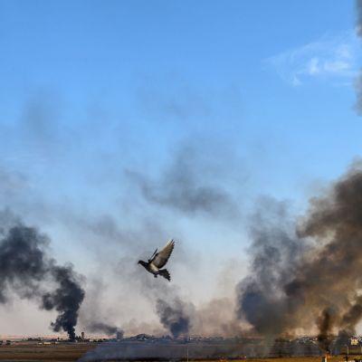 Den syriska staden Tal Abyad. Bilden tagen från den turkiska sidan i Akcakale. .