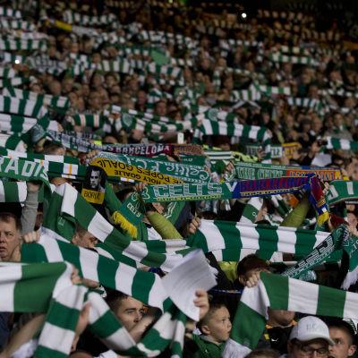 Celticanhängare med klubbens dukar.