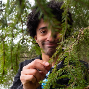 Diego Machado ler bakom en grankvist