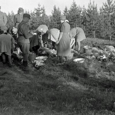 Seitajärven partisaanihyökkäyksen siviiliuhreja 7. heinäkuuta 1944.