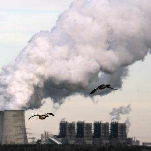 Tyskt kolkraftverk