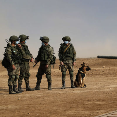 Ryska soldater plus en hund deltar i militärövning.