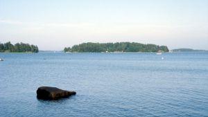 Kesäinen merimaisema, veneilijöitä