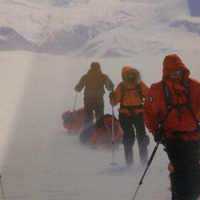 """Bild från Polarklubbens publikation """"Arktisia kertomuksia"""""""