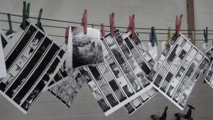 Bild på torkande fotografier.