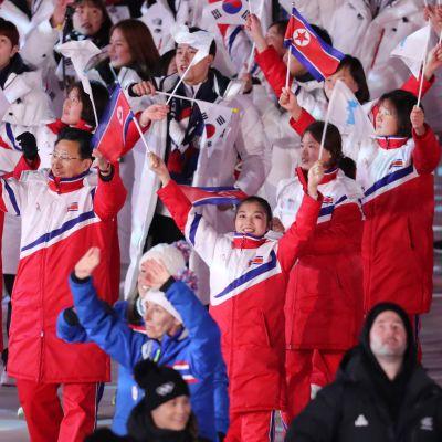 Nord- och Sydkorea sida vid sida i OS i Pyeongchang.
