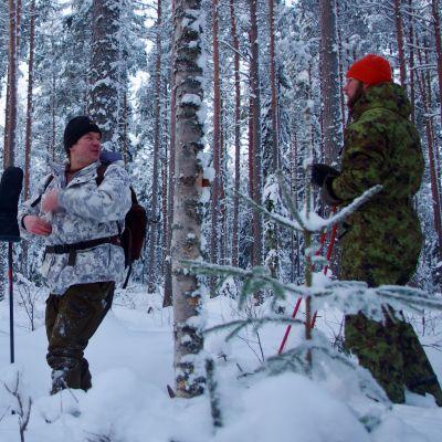 Lumi on mahdollistanut talviset riistakolmiolaskennat Ilmajoella