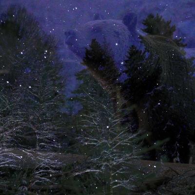Kuvakollaasi, talvinen metsämaisema, taustalla iso karhun hahmo