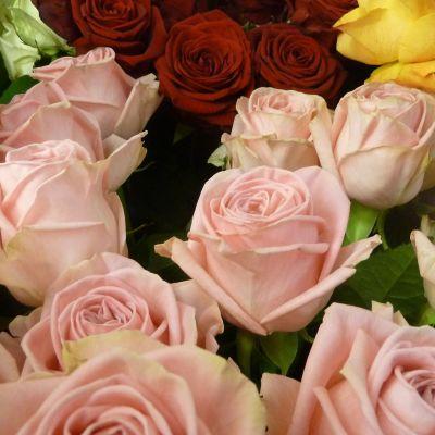 Ruusuja oululaisessa kukkakauppa Kanervassa.