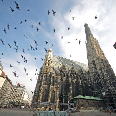 Wien erbjuder världens bästa livskvalitet enligt konsultbolaget Mercer.