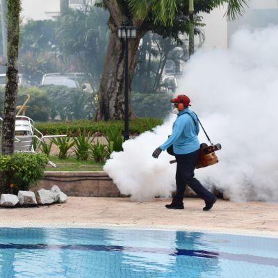 En man går längsmed en poolkant och sprutar insektgift i ett moln.