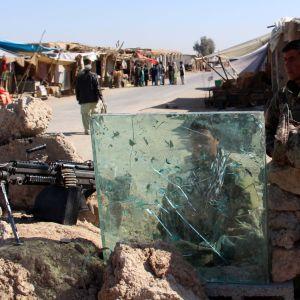 Provinsen Helmand hör till talibanernas starkaste fästen och de kontrollerar stora delar av ökenprovinsen