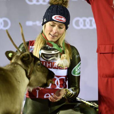 Mikaela Shiffrin ja neljäs poro. Levi 2019.