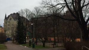 Yvonne Westerlunds hemmiljö Skatudden i Helsingfors.