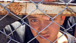 En ung pojke stirrar in i kameran med stora bruna ögon. Mellan honom och fotografen finns ett gallerstängsel
