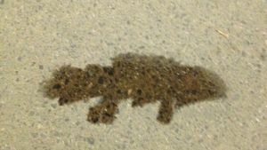 Fossiilikalan mallinen öljyläikkä maassa