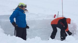 Lumikuopan avulla tutkitaan lumen kerrostumia.