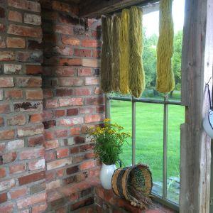Växtfärgade garner som hänger på tork.