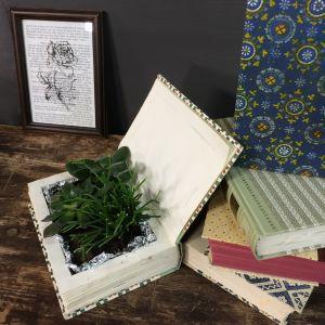 En bok med en succulent plantering i sig.