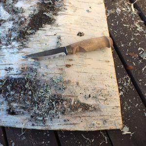 Björknäver och en kniv