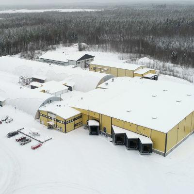 Talvinen ilmakuva Salico Oy:n ja Mestariviljelijät Oy:n toimitiloista Juvalla.