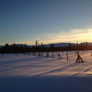 Melkein koskematon lumimaisema Kittilän Raattamassa kevättalvella 2015. Auringonvalo ja aita.