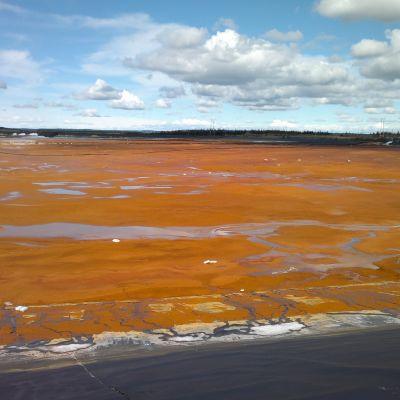 Ett fält med orangefärgat slem och jord på marken i Sotkamo.